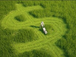 Lawn mowing run for sale URGENT Byron Shire Mullumbimby Byron Area Preview