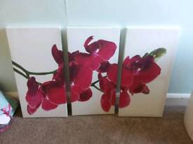 Flower picture canvas