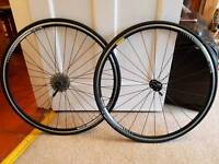 DT Swiss wheel set. 700 x 23C With tyres and cassette