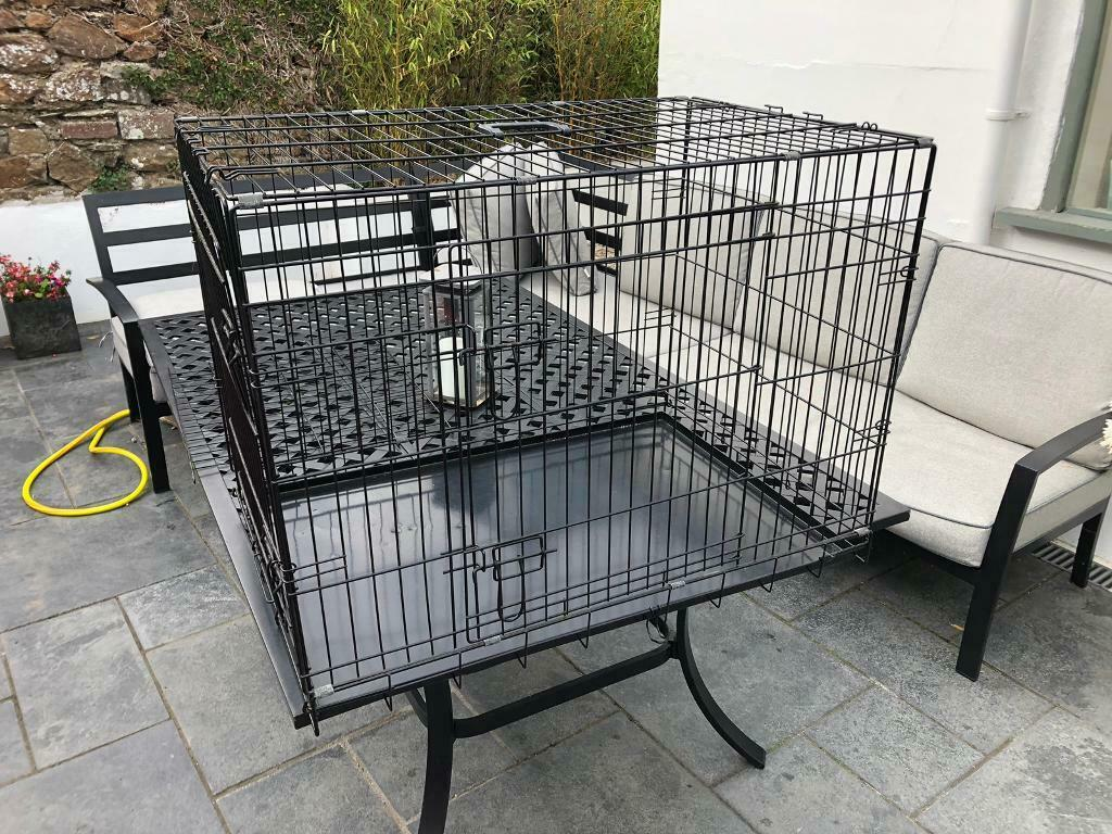 Stupendous Ellie Bo Dog Puppy Cage Folding 2 Door Crate With Non Chew Metal Tray Black Large 36 Inch In Saltash Cornwall Gumtree Machost Co Dining Chair Design Ideas Machostcouk