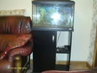 FISH TANK,for sale +stand and all you need to start.
