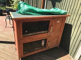Beautiful pet rabbit and hutch £75