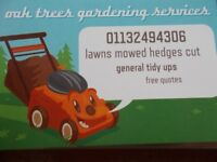 oak trees 07434526630 gardening services lawn mowed hedges trimmed over grow a speciality