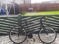 1 bikes for sale gents universal 18 speed good condition