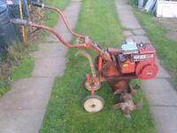 ROTAVATOR ALLOTMENT ROTOVATOR MERRY TILLER MAJOR 5 HP BRIGGS & STRATTON ENGINE CULITVATOR GARDEN
