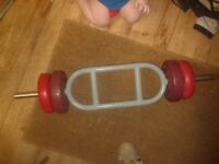 "TRICEP/BICEP 1"" WEIGHT BARBELL BAR & 8KG WEIGHTS . GYM/LIFTING ARM/CURLS"