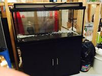 30 gallon fish tank and stand combo