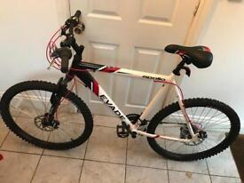 Nearly new mountain bike & accessories