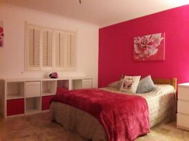 Large DBL Room with EnSuite For Rent