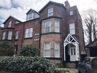 Sefton Drive, Sefton Park - One bed furnished fully renovated flat...with utility bills included