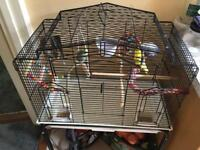 Cage with birds