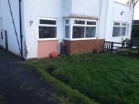 Semi detached house, 3 bedrooms, large gardens in tyersal bd4. New carpets.