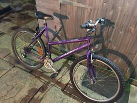 Raleigh Vixen Ladies Bike. Good condition & Serviced ready to go. Free Lock, Lights, Delivery