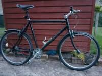 Hybrid Bike - Single Speed