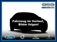 Ford Fiesta 1.25 Celebration 5tg  Klima,CD