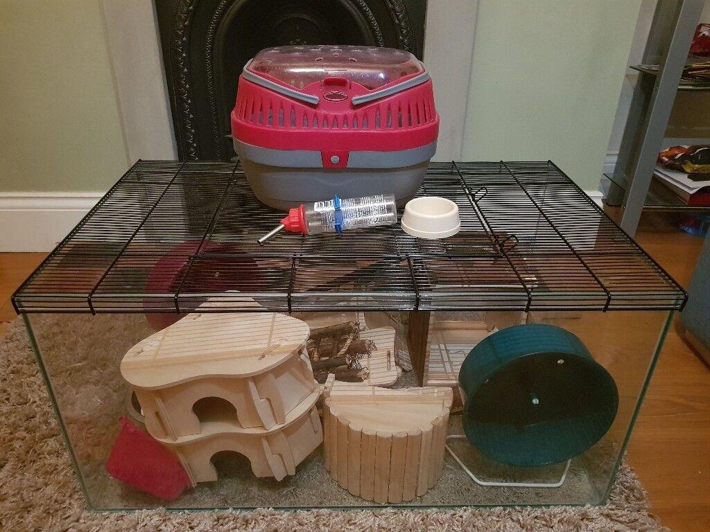 Kerry Small Pet Terrarium Accessories In Derby Derbyshire