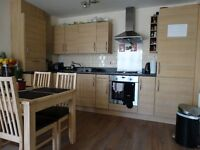 Lovely, quiet double room en-suite to rent for single or couple - fully furnished
