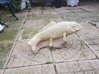 stone koi carp