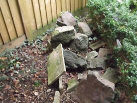 rockery stone approx 20 pieces of varying sizes