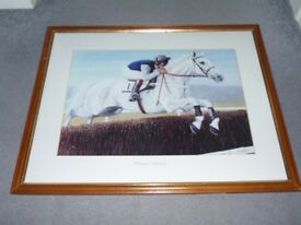 Race Horse Picture of Desert Orchid