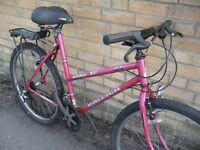 "20"" Raleigh Manta mountain bike - central Oxford - ready to ride"