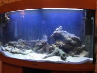 Marine fish tank full set up empty running tank £400