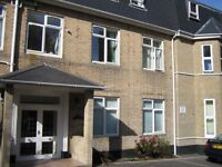 Split level, spacious refurb'd 1 bed fully furnished flat, alloc parking, nr Lansdowne & East cliff