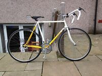 Falcon Echelon Team Banana Road Race Vintage Bike Excellent Condition Restored/Upgraded Parts 1991