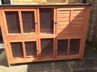 Bluebell rabbit hutch