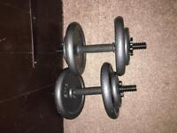 Weights bench + allsortment of weights