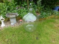 Very large round clear glass jar ( Demijohn ) 65 cm high by 43 cm dia.