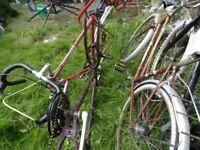 bikes job lot mtb carbolight 103 racer etc