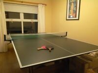 Full-size Table tennis table with bats, net, balls.