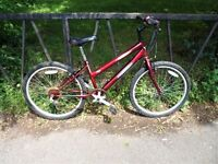 Smaller Frame Ladies Mountain Bike Bicycle. Fully Serviced, Ready To Ride & Guaranteed. 5 Speed