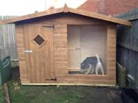 Dog Kennel + Run ( 9ft x 4ft)