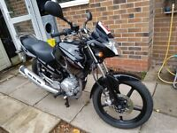 Yamaha YBR 125 125cc motorcycle, black, low mileage 5053, good condition