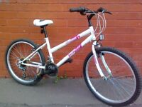 Dunlop Mountain Bike - Ready to ride .