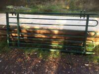 Single steel gate , 2.4 high , 1.0 wide ,
