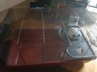 Large Alaska hamster cage with accessories perfect for syrian hamster