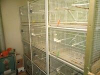 12 wire bird cages with racks.