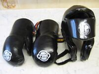 TAGB Head Guard and T-Sport Semi Contact Gloves