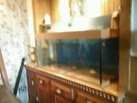 Juwel rio 220ltr four foot aquarium