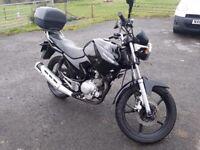 Yamaha YBR125 2010 black learner motorbike