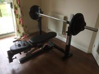 PowerTec Workbench Olympic Bench - Weightlifting / Gym / Professional - Excellent Condition RRP £500