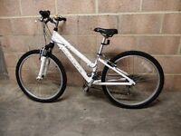 Ridgeback Destiny Bicycle