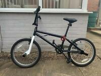 BMX Bike With StuntPegs (Removable)