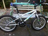 """Dawes Blowfish 18"""" child's bike - like new"""