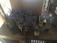 JOB LOT LAVENDER FLOWERS JARS X 16 LACE HESSIAN RUSTIC COUNTRY CENTRE PIECE