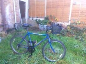 APOLLO VERTIGO Bike available for sale worth £25 with a front basket and attached lights