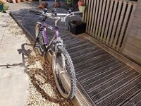 Two Mountain Bikes For Sale